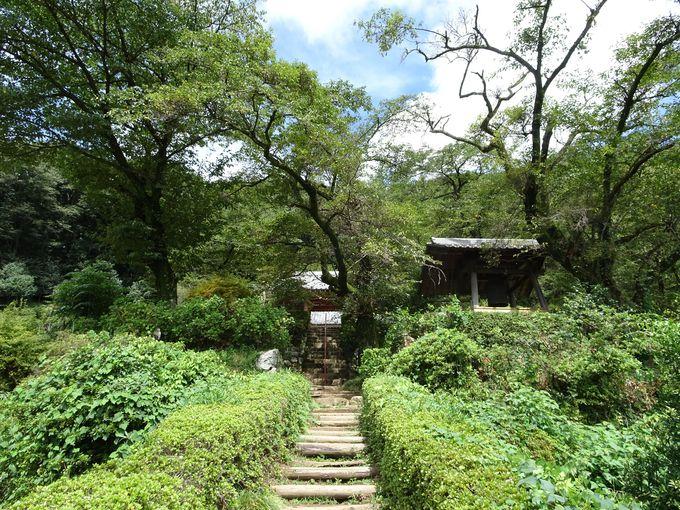 「桂木山」は大和の葛城山に似ている!? 山の中腹にある「桂木観音」