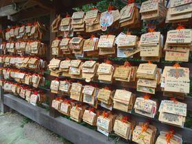 """船橋に""""嵐神社""""が!千葉「二宮神社」は嵐ファンの聖地として人気"""