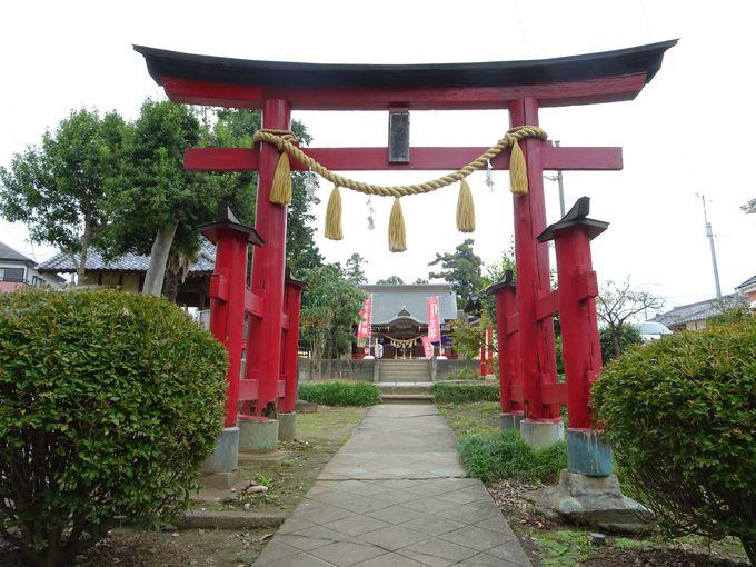 埼玉県鴻巣市に鎮座する「氷川山 大野神社」とは?