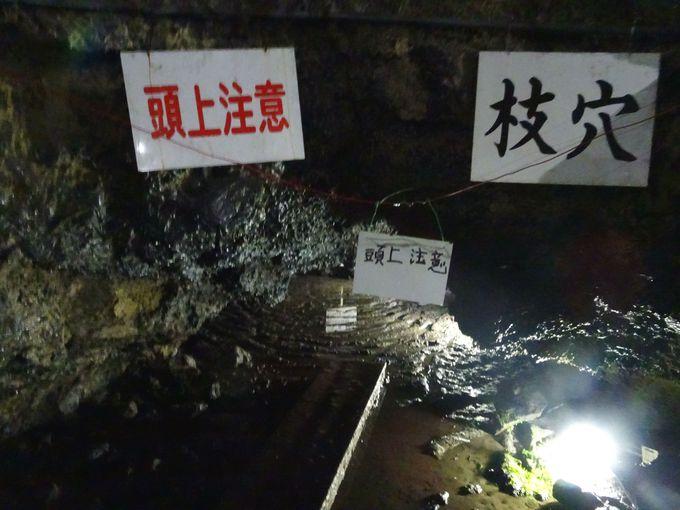 洞窟は途中で二手に分かれる巨大洞窟!「本穴」と「枝穴」