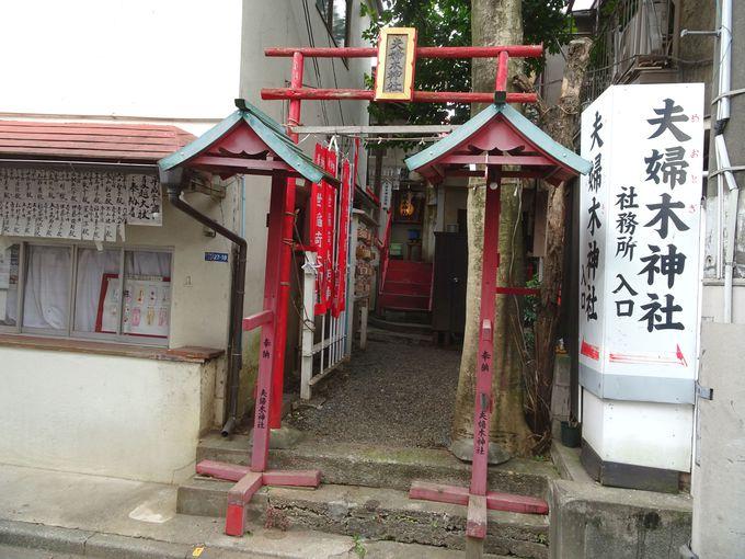 あの芸能人がご参拝後、すぐにご懐妊したという「夫婦木神社」