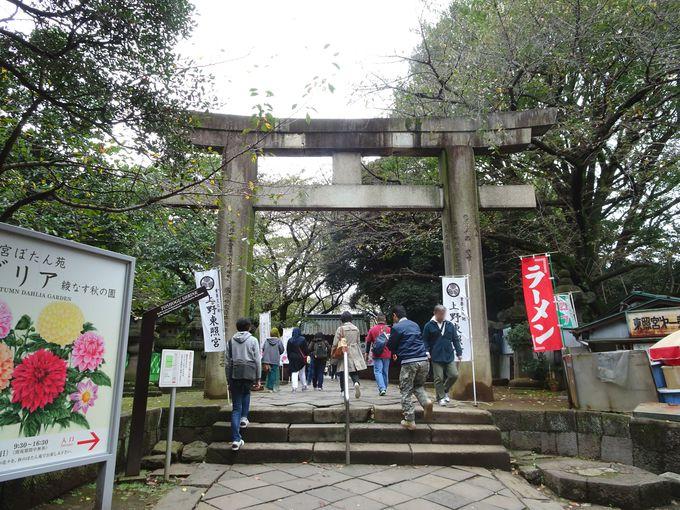 上野東照宮のシンボル的存在「大石鳥居」