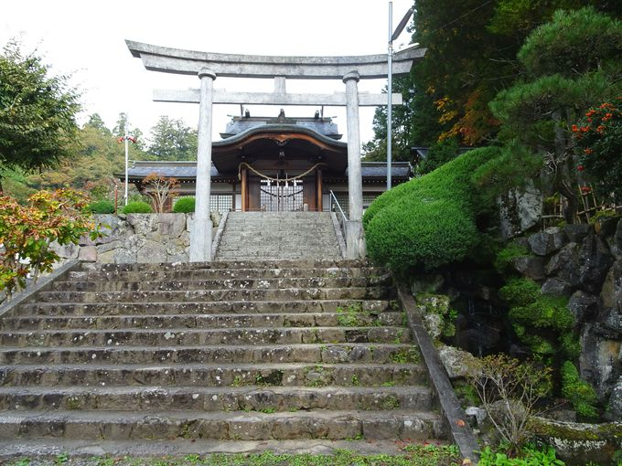 「夫婦木神社」…お祀りされているご神体・ご祭神、そのご利益は?