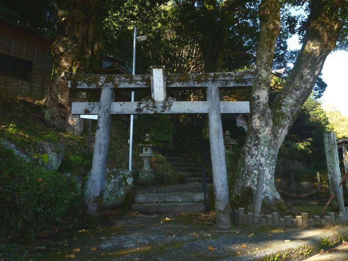 丹那断層と同じ断層上のズレの跡にある神社! 函南町「火雷神社」