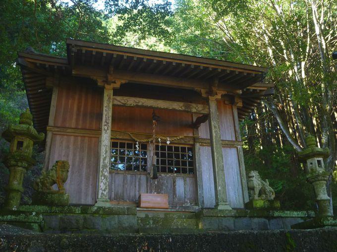 先人が残してくれた「火雷神社」に祈りを捧げる