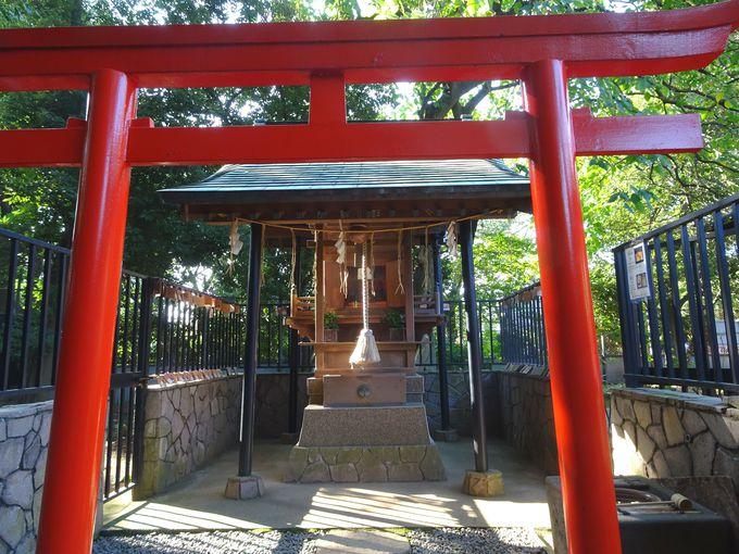 まさしく金色殿! 上野東照宮の社殿