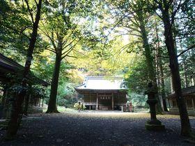 映画・ドラマなどロケ多数!静岡「二岡神社」は御殿場の隠れ名所