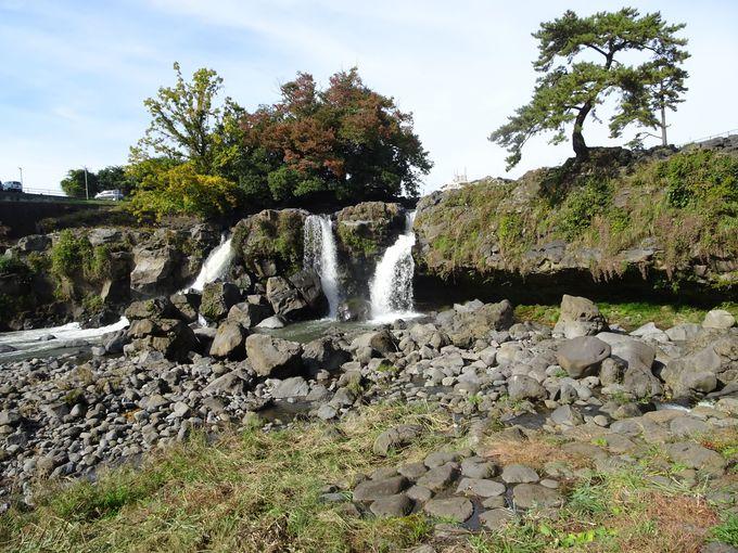 ポイント2:滝を間近で体感してみよう