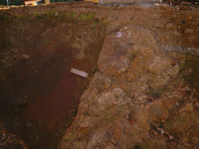 「丹那断層公園」で、断層のズレも見てみよう