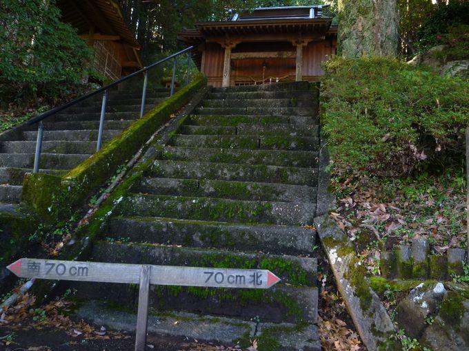 石段を上ったら、上から眺めてみよう!