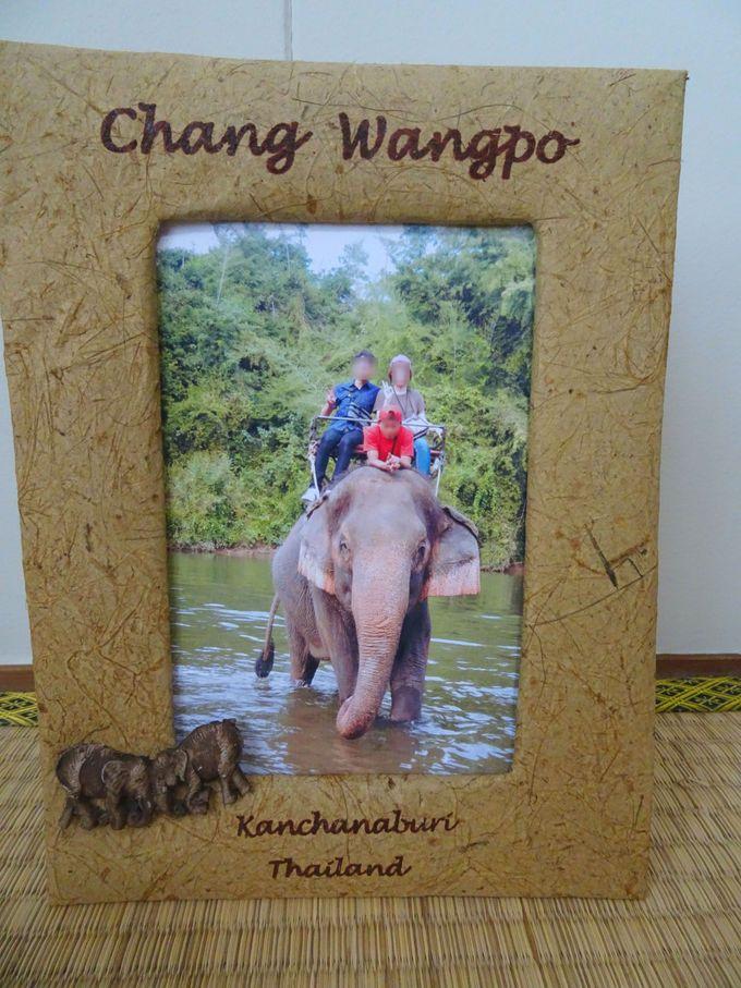 """川の中で撮影した写真は販売! フォトスタンドは、""""ゾウの糞""""でできてる?"""