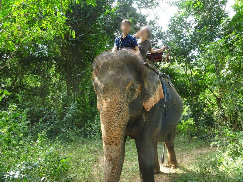 ゾウ使いはモン族!カンチャナブリーでゾウ乗り体験「ワンポー エレファント キャンプ」