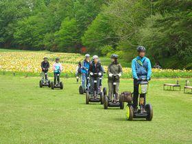 お花畑にセグウェイ、面白遊具も!埼玉「国営武蔵丘陵森林公園」は家族で楽しめるスポット