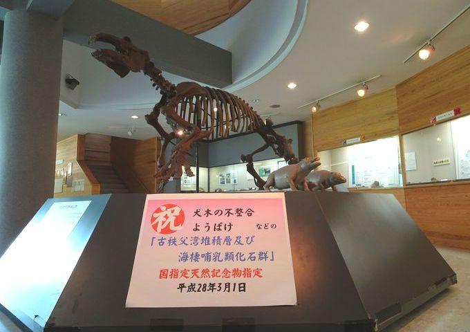 小鹿野町の観光スポット。パワースポットにグルメ、化石館