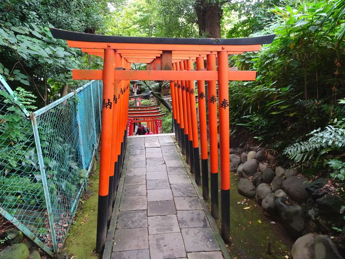 上野恩賜公園内にご鎮座!「花園稲荷神社」