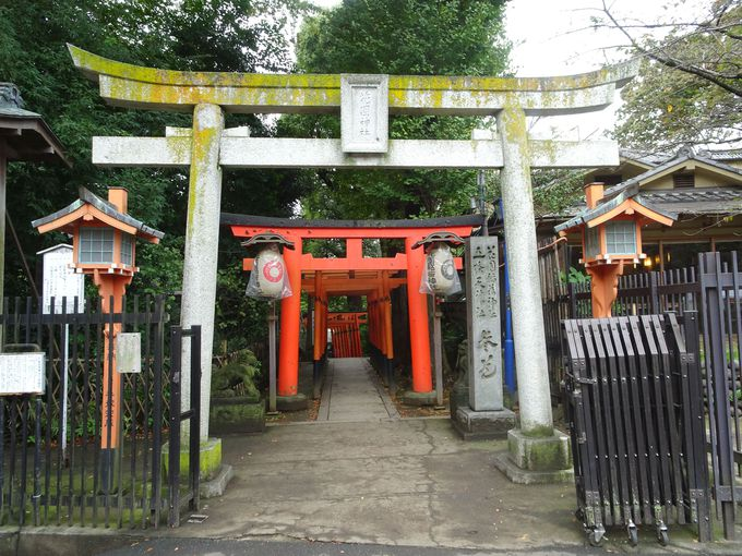 5.上野大仏/花園稲荷神社/穴稲荷
