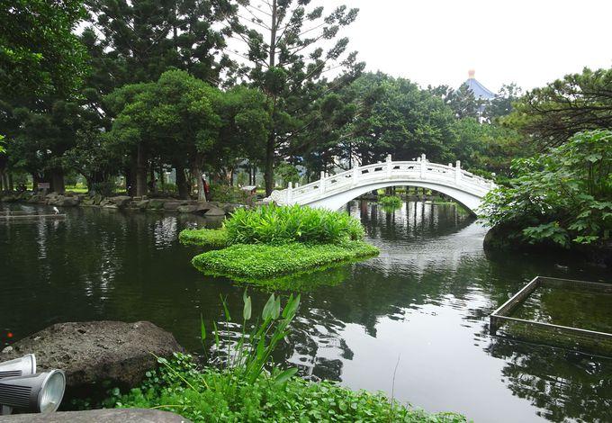 3.中国風の美しい庭園の散策、鯉にエサやり