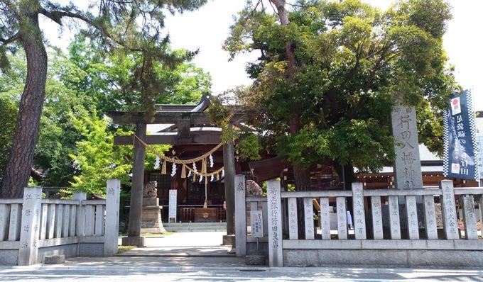 足袋のまちにご鎮座する、病気平癒の最強パワースポット「行田八幡神社」