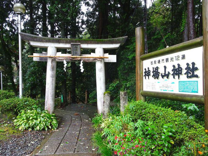 はさみで病気・悪縁を断ち切る!全国的にも珍しい「神場山神社」