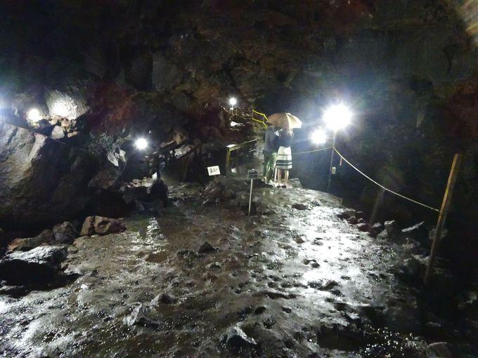 国内最大級の溶岩洞窟!「駒門風穴」で富士山パワーを感じる