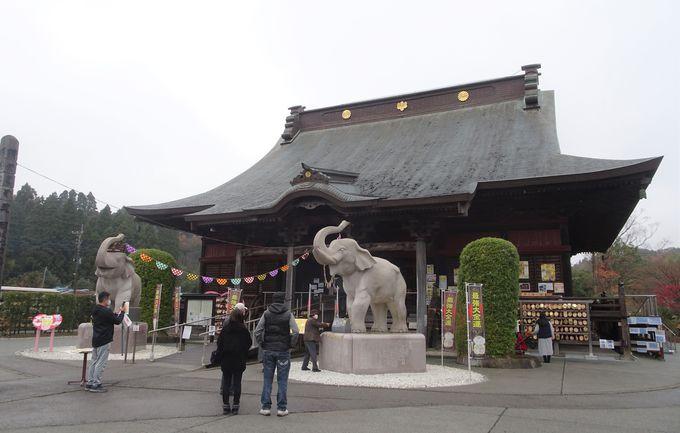 日本一の金運寺は千葉・長生郡にある!「長福寿寺」