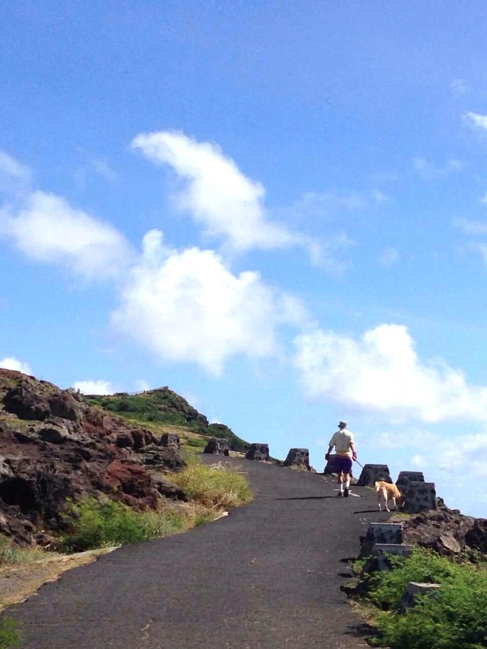 自分のペースで山登り!ゆったりとした舗装された道
