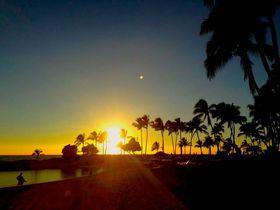 グルメから夕日まで!人気のノースショアと話題のコオリナリゾート見所満載1日プラン