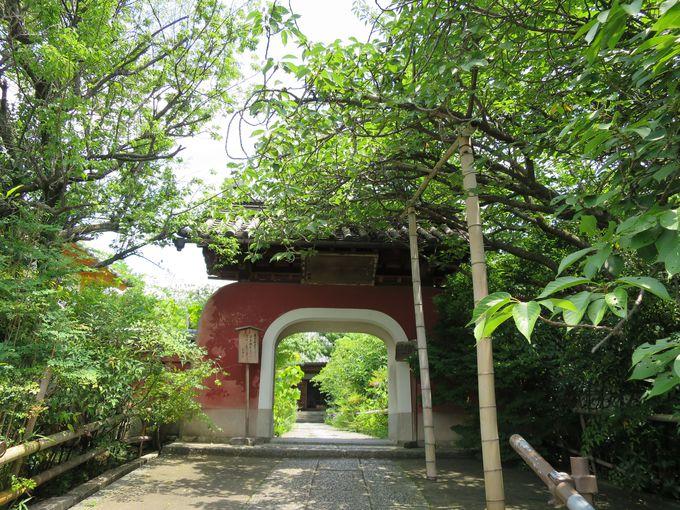 伏見稲荷大社から徒歩10分:石峰寺