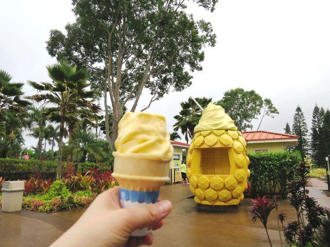 『ドール・プランテーション』でパイナップル・ソフトクリーム