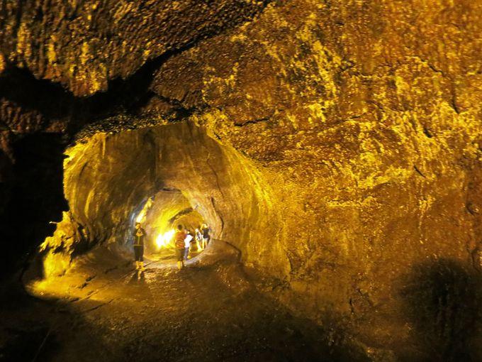 3.サーストン溶岩トンネル(キラウエア火山国立公園)