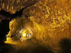 ハワイ島パワースポット『サーストン溶岩トンネル』でオーラ!?
