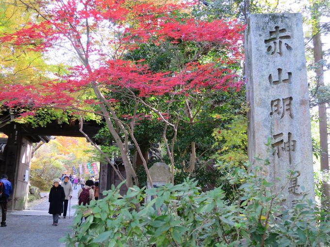 参道は紅葉トンネル!多種多様な神様仏様を祀る赤山禅院