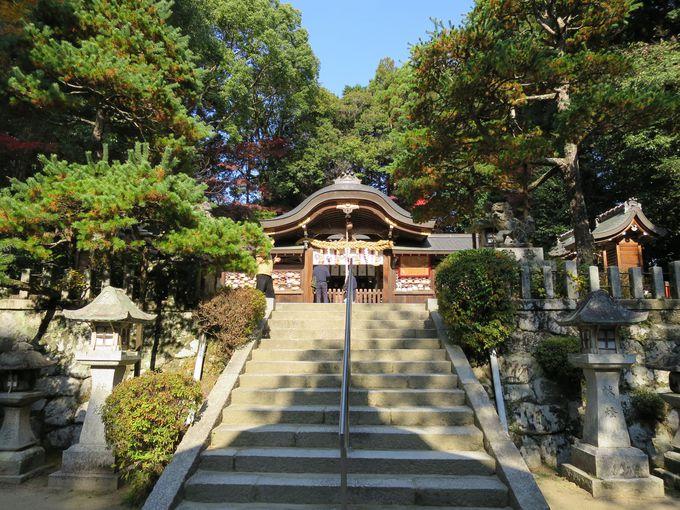 「縁結びの石・八重垣」にお祈り!良縁に恵まれる鷺森神社