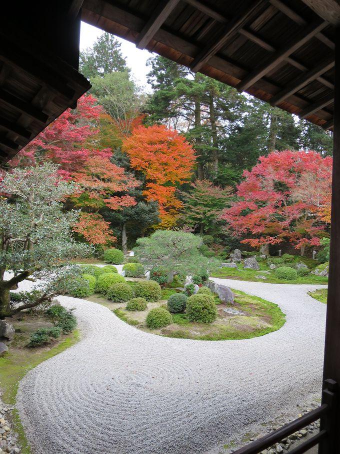 紅葉の美しい曼殊院門跡・名庭にうっとり、幽霊画にビックリ