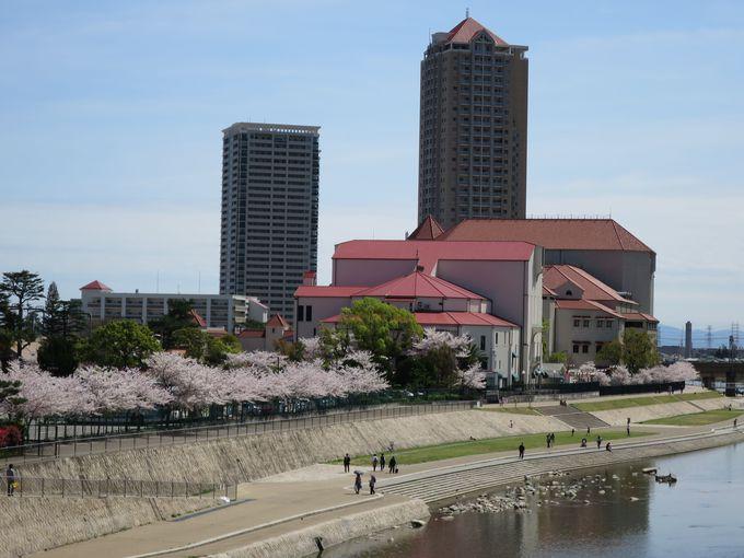 必見!武庫川の桜並木と「清く、正しく、美しく」宝塚歌劇の歴史