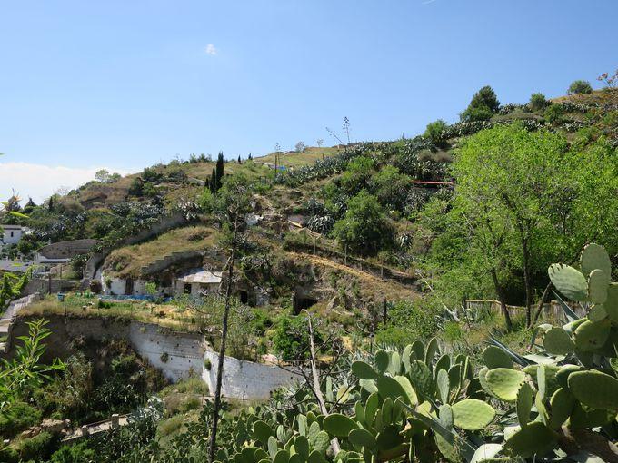 2)サクロモンテと洞窟住居ツアー:洞窟住居の前を通って絶景を見よう