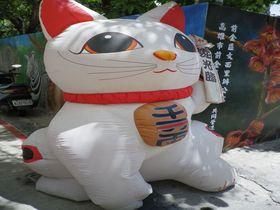 猫カフェならぬ「招き猫カフェ」!?台湾・高雄「御見猫」