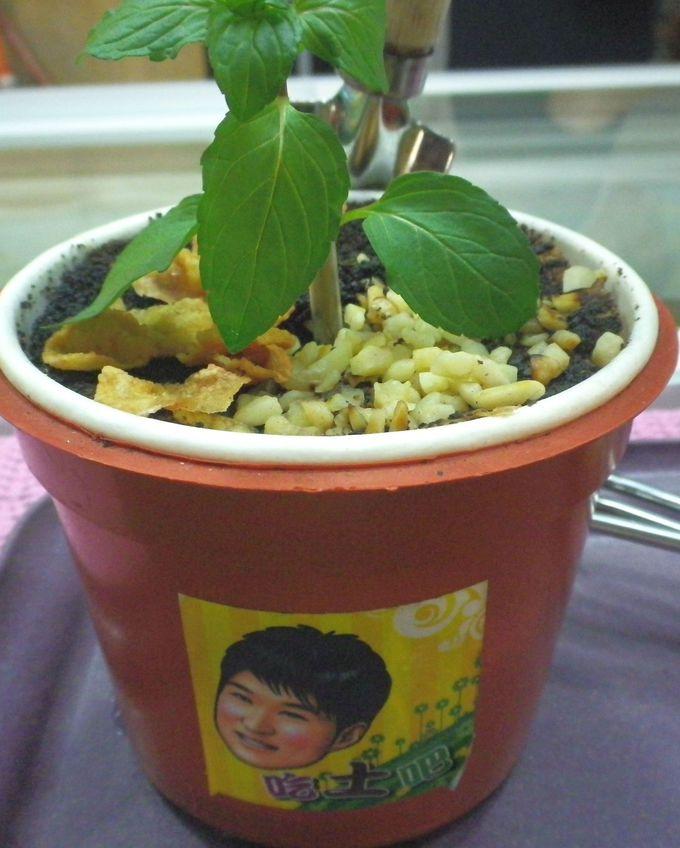 怪しげな盆栽の正体は…