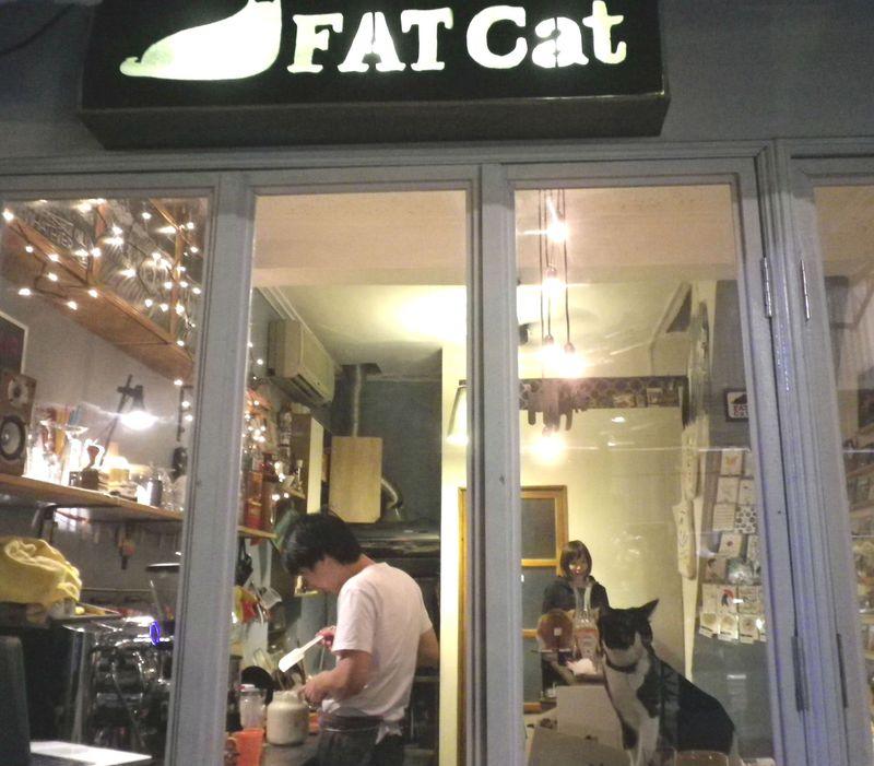 台湾が発祥地!台南の隠れ家猫カフェで音楽&猫に癒されるひととき