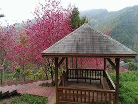 春休みに行きたい台湾の観光スポット8選 美しい景色に会いに行こう
