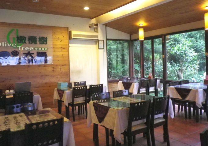 自然豊かなレストラン♪