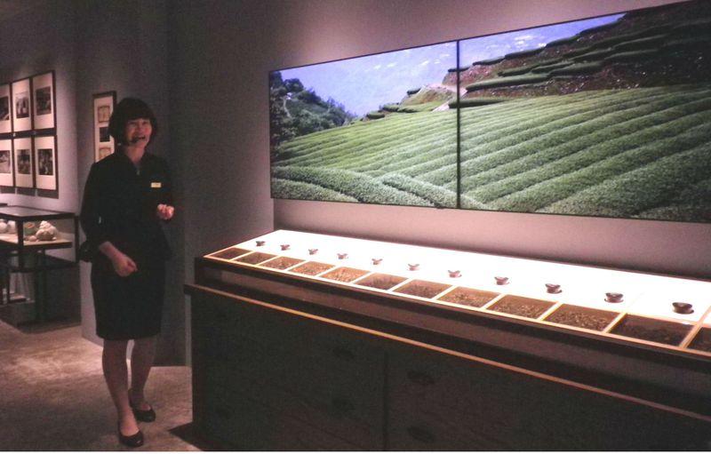 台湾高山茶に触れて、飲んで、学べる「遊山茶訪」台湾・南投