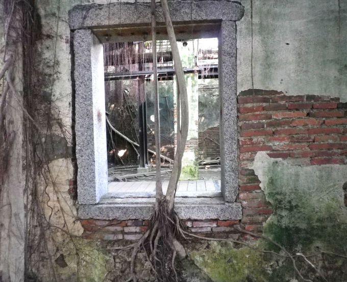 「安平樹屋」