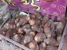 高雄市内から産地へ!「甲仙」で台湾タロイモフード食べ尽くし