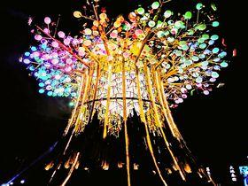 2020台湾ランタンフェスティバルの会場!「台中花博后里森林園區」