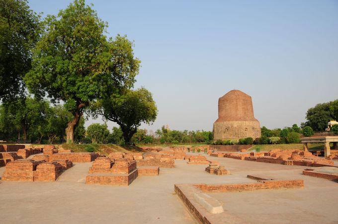 仏教4代聖地のひとつ初転法輪の地サールナート。