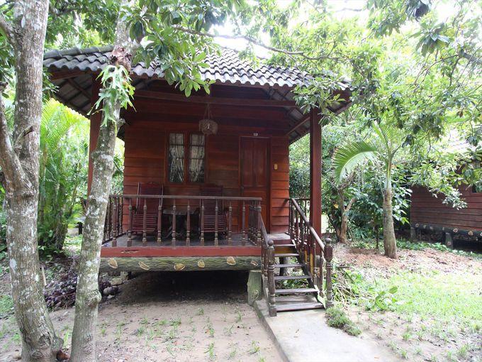 自然の中に建つバンガローで一夜を過ごすのも