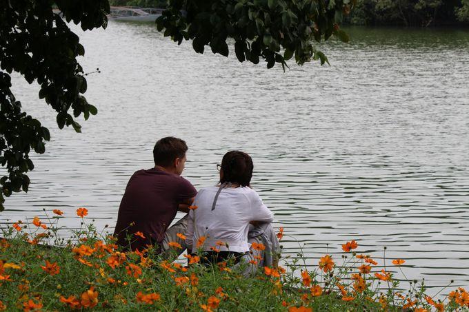 湖畔に座ってホアンキエム湖を愛でる