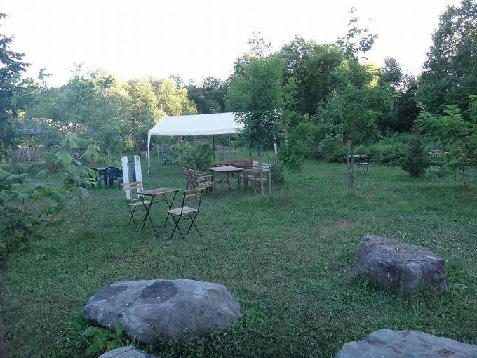 緑に囲まれたお庭でのんびり