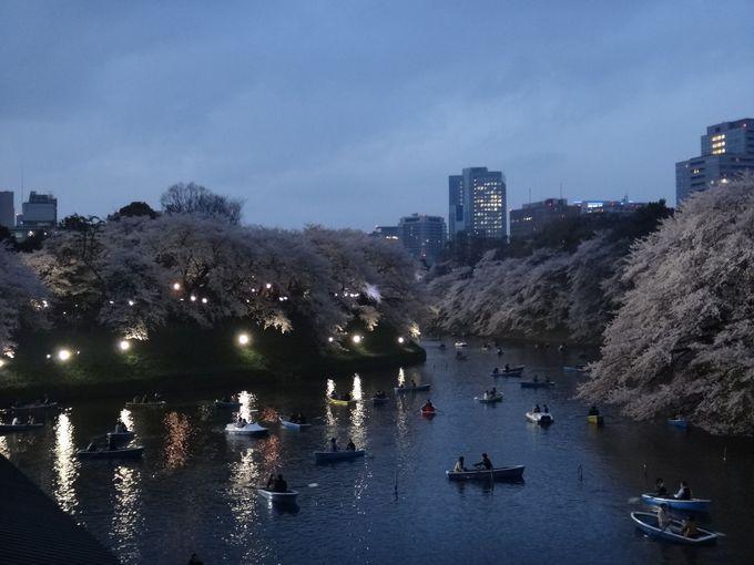 千鳥ケ淵緑道のライトアップ夜桜